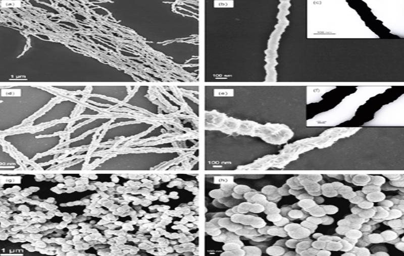 تولید نانوسیم های کبالت